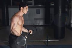 Молодой спортсмен в бицепсе спортзала выполняя завивает с штангой стоковая фотография