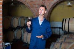 Молодой счастливый работник винодельни держа бокал вина в погребе Стоковые Фото