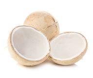 Молодой сладостный конец-вверх кокосов изолированный на белой предпосылке Стоковые Изображения