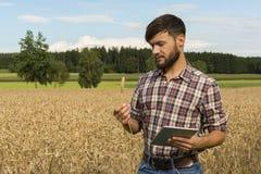 Молодой фермер при таблетка проверяя урожай стоковое фото