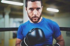 Молодой человек бокса смотря агрессивный с перчатками бокса на кольце Кавказский спортсмен в черных перчатках смотря камеру Стоковое Фото