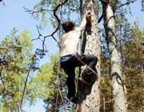 Молодой человек взбираясь на дереве с веревочкой Стоковое фото RF