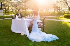 Молодой человек делая предложение замужества Влюбленность, пара, дата, wedding концепция Стоковые Изображения