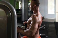Молодой человек делая тяжеловесную тренировку для задней части Стоковые Фотографии RF