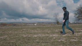 Молодой человек идя с его желтым labrador через поле акции видеоматериалы