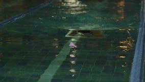 Молодой человек плавая переднее ползание в бассейне Динамический и подходящий пловец дышая выполняющ ход бабочки сток-видео