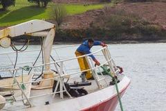 Молодой член команды на смычке траулера как она стыкует в гавани Kinsale в пробочке графства на южном береге Ирландии Стоковая Фотография