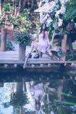 Молодые женщины Азии сидя в красочном цветочном саде Стоковые Фото