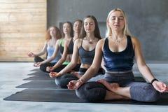 Молодые женщины в занятиях йогой, ослабляют представление раздумья Стоковые Фото