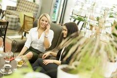 Молодые женщины в кафе Стоковые Фотографии RF