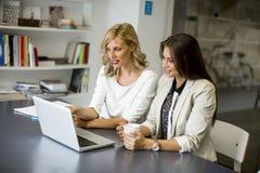 Молодые женщины в офисе Стоковые Фотографии RF