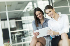 Молодые женщины в офисе Стоковые Изображения RF