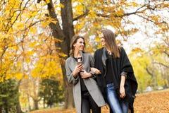 Молодые женщины в парке осени Стоковые Изображения RF
