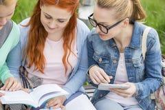Молодые женщины изучая совместно в парке Стоковая Фотография RF