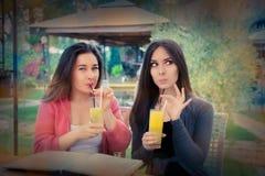 Молодые женщины имея свежее питье совместно Стоковые Фото