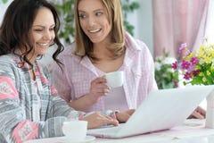 Молодые женщины используя компьтер-книжку Стоковое Изображение