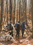 Молодые женщины идя в лес Стоковое Изображение RF