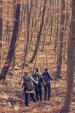 Молодые женщины идя в лес Стоковые Изображения