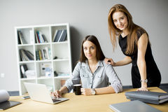 Молодые женщины работая в офисе Стоковая Фотография