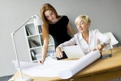 Молодые женщины работая в офисе Стоковая Фотография RF