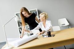 Молодые женщины работая в офисе Стоковое Изображение