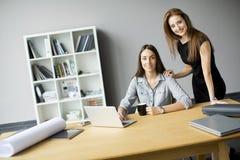 Молодые женщины работая в офисе Стоковые Изображения