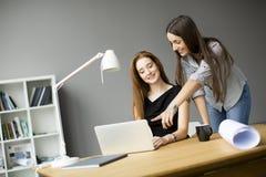 Молодые женщины работая в офисе Стоковое Фото