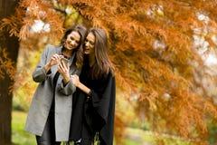 Молодые женщины с мобильным телефоном в лесе осени Стоковая Фотография