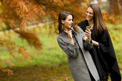 Молодые женщины с мобильным телефоном в лесе осени Стоковое Изображение RF