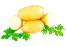 Молодые картошки, украшать петрушки. Изолированный Стоковое Изображение