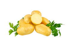 Молодые картошки, украшать петрушки. Изолированный Стоковая Фотография