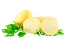 Молодые картошки, украшать петрушки. Изолированный Стоковое Фото