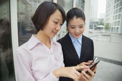 Молодые коммерсантки смотря их сотовые телефоны Стоковые Фотографии RF