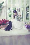 Молодые невеста и собака Стоковые Фотографии RF