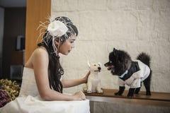Молодые невеста и собака Стоковые Изображения RF