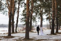Молодые новобрачные пар идут прочь в лес зимы в снеге стоковая фотография