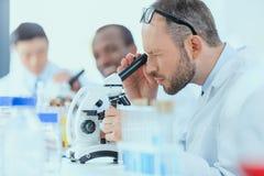 Молодые доктора в форме работая на испытательной лаборатории Стоковое Изображение