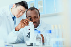 Молодые доктора в форме работая на испытательной лаборатории Стоковое Изображение RF