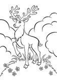 Молодые олени в лесе иллюстрация штока