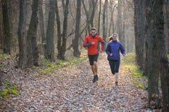 Молодые пары бежать на следе в одичалом лесе стоковое изображение rf