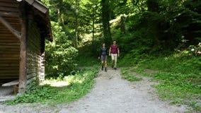 Молодые пары в лесе сток-видео