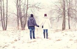 Молодые пары в зиме паркуют, древесины, отдыхая наслаждающся прогулкой, счастливой семьей, отношениями влюбленности концепции сти Стоковая Фотография RF
