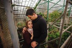 Молодые пары в парнике не смотря в камере Стоковые Фото