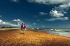 Молодые пары идя вдоль пляжа идя совместно вид сзади концепции Стоковое фото RF
