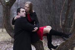 Молодые пары на дереве в парке падений Стоковое фото RF