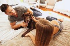 Молодые пары на кровати с собакой Стоковое Изображение RF
