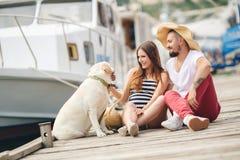 Молодые пары на прогулке в гавани с собакой Стоковые Изображения