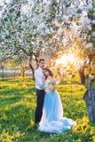 Молодые пары обнимая на заходе солнца в зацветая весне садовничают Влюбленность и романтичная тема Стоковое Фото