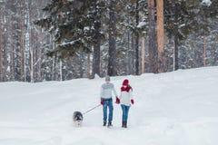 Молодые пары при осиплая собака идя в зиму паркуют, человек и женщина играя и имея потеху с собакой Стоковая Фотография