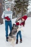 Молодые пары при осиплая собака идя в зиму паркуют, человек и женщина обнимая собаку Стоковая Фотография RF